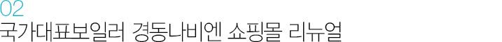 02. 국가대표보일러 경동나비엔 쇼핑몰 리뉴얼