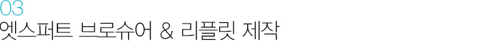 03 엣스퍼트 브로슈어 & 리플릿 제작