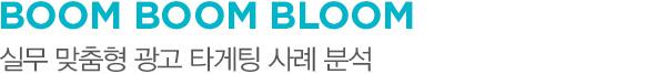 BOOM BOOM BLOOM 실무 맞춤형 광고 타게팅 사례 분석